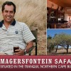 Welcome to Magersfontein Safaris